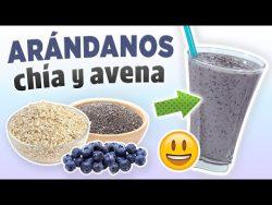 Batido Antioxidante de Arándanos, Chía y Avena – Licuado Saludable, Fácil y Rápido – ...